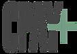 CPayPlus logo